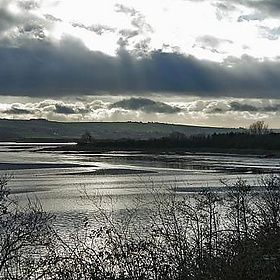 The Taw Estuary - me'nthedogs