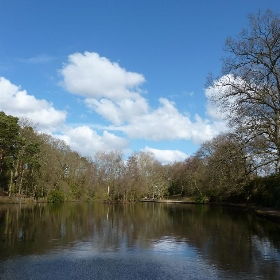 Hiltingbury Lakes, Chandler's Ford, Hampshire - Martoneofmany