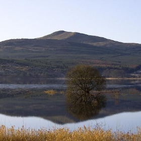Carron Valley Reservoir - Son of Groucho