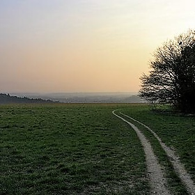Guildford Downs - danchitnis