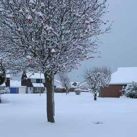 Guess i 'll stay home today !! snow west sussex littlehampton - richebets