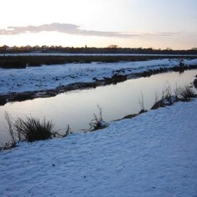 Doxey Marsh all icy and cold! - William Hook