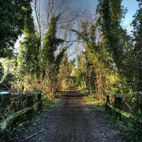 Ebury way cycle path - Bob McCaffrey