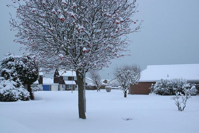 Guess i 'll stay home today !! snow west sussex littlehampton